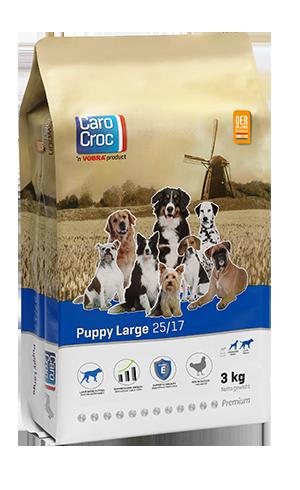 Puppy Large