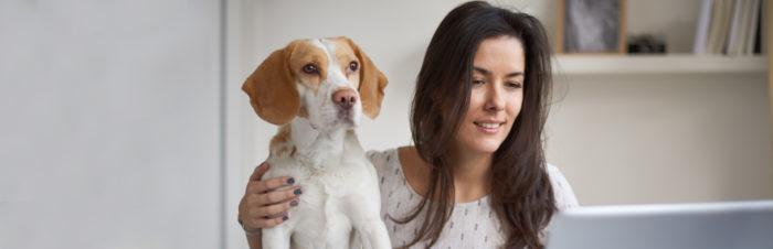 Thuiswerken met jouw hond
